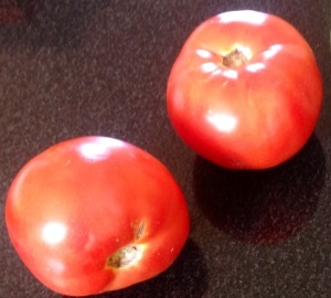 Beautiful ripe tomatoes