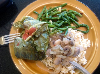 Yesterday's dinner. I also cooked the brown rice and green beans yesterday. Leftovers!