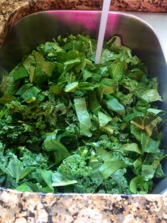 Kale/Collard green combo soaking in water