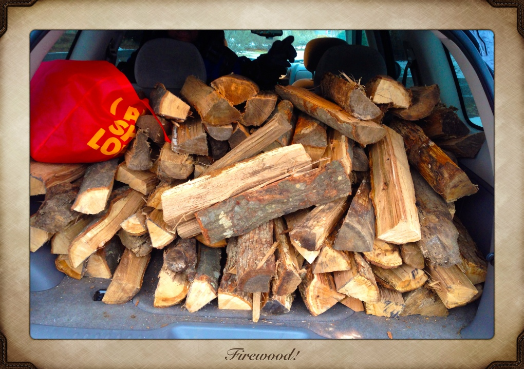 Yesterday evening's wood haul.
