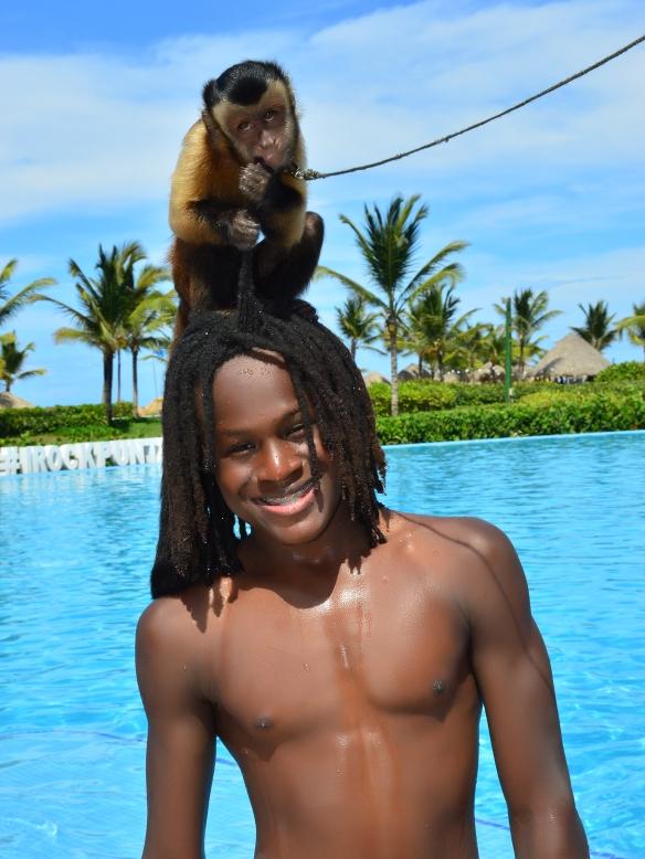 Monkey on tailor head